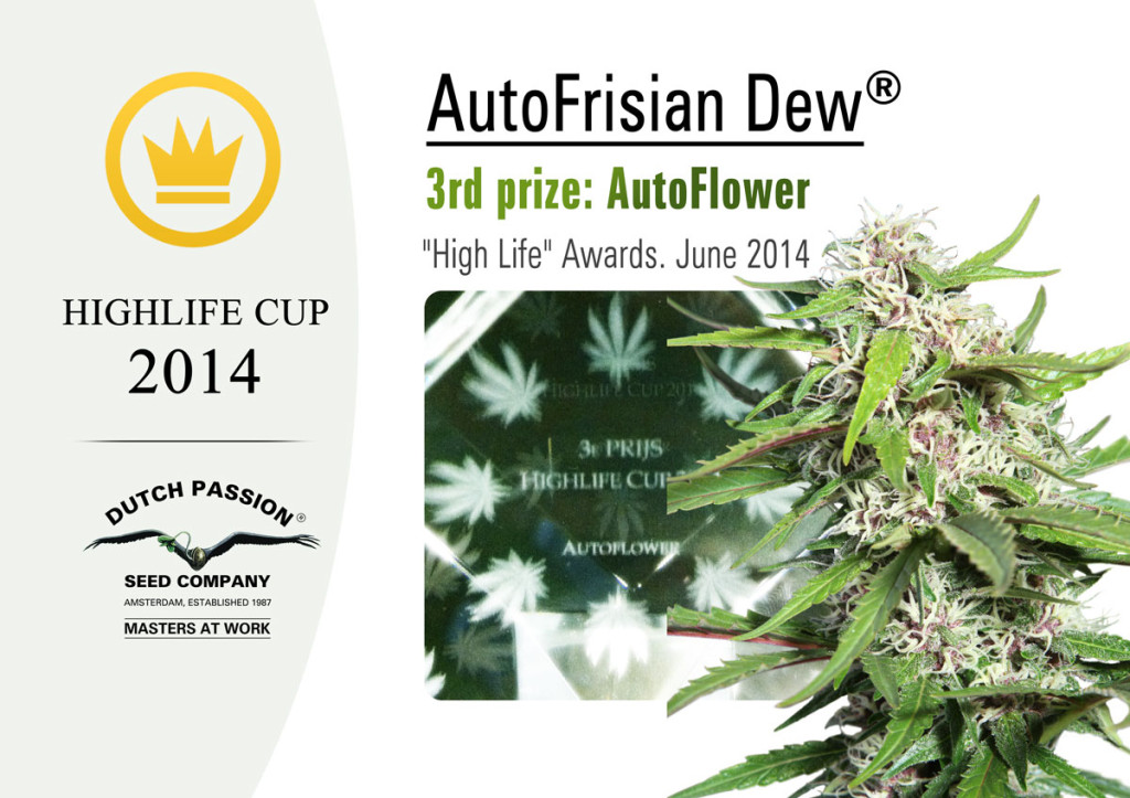 Prizewinner-AFD