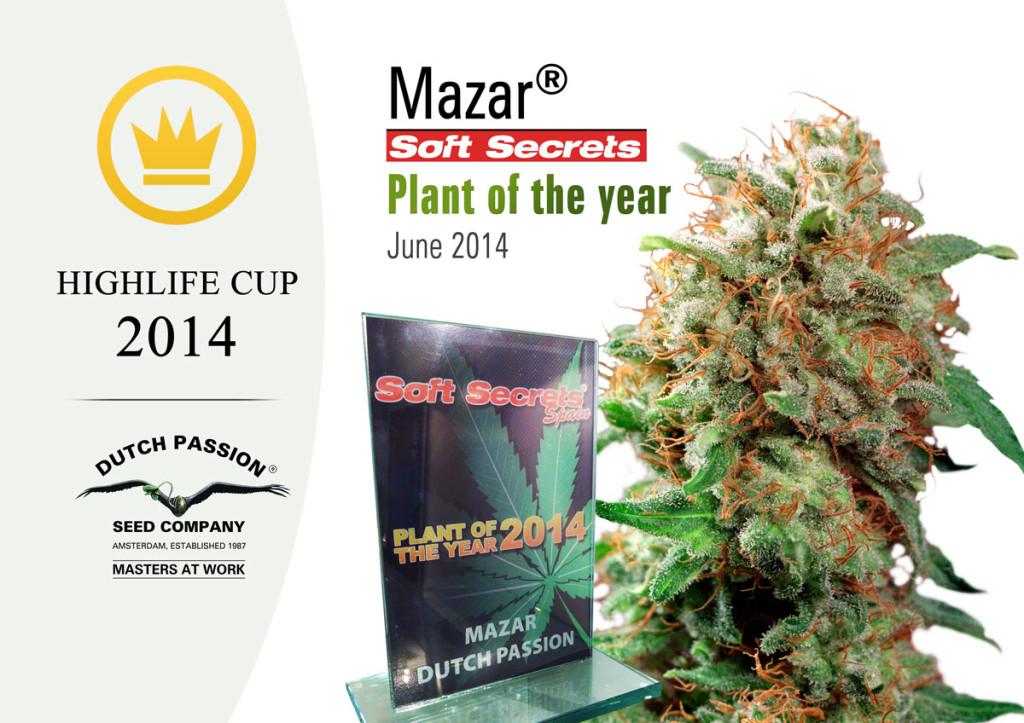 Prizewinner-Mazar