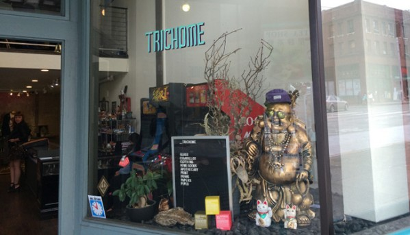 marihuana-kava-trichome-seattle-5