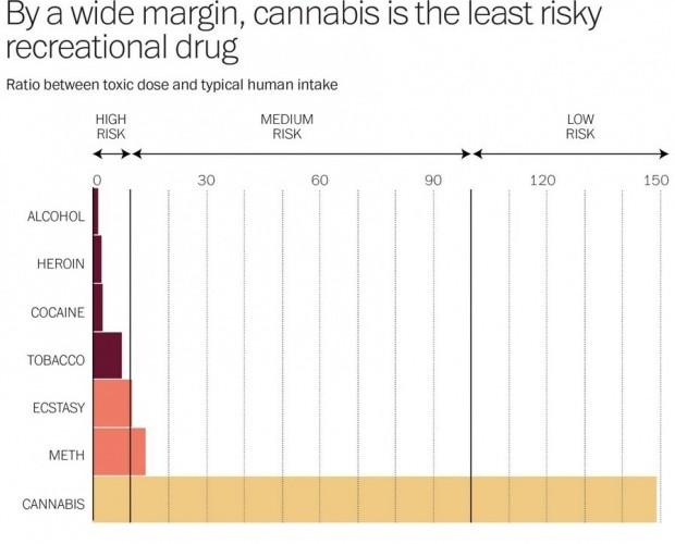 marihuana-najbezpecnejsia-droga-graf