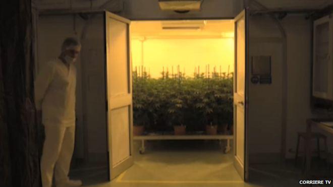 pestovacia-miestnost-talianskej-armady
