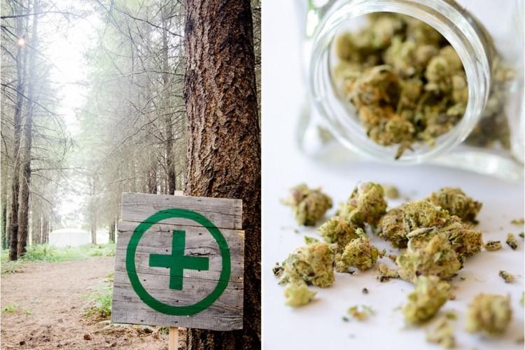 marihuanova-svadba-3