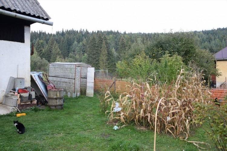 brezno-zahrada-marihuana-2