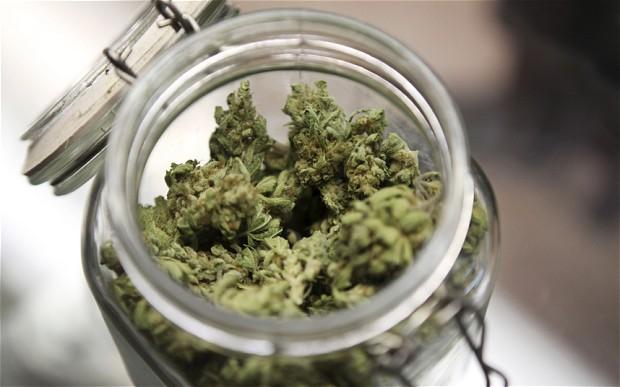 marihuana-sklenena-nadoba