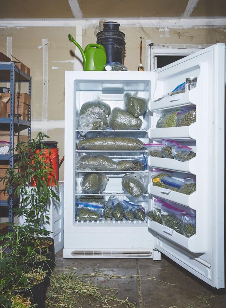 marihuana-mnisky-2