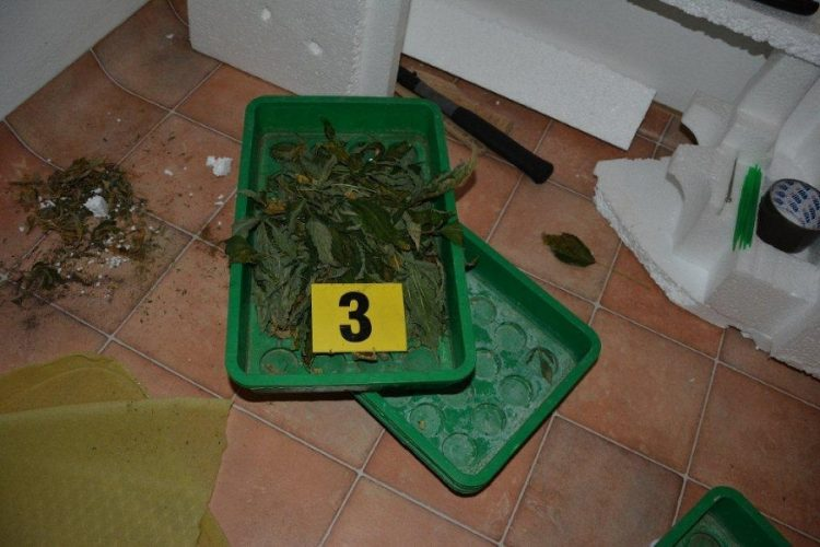 banska-bystrica-policia-marihuana-3