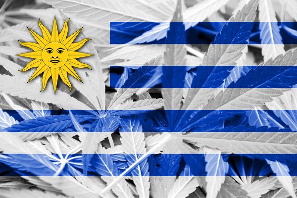 vlajky-marihuana-5