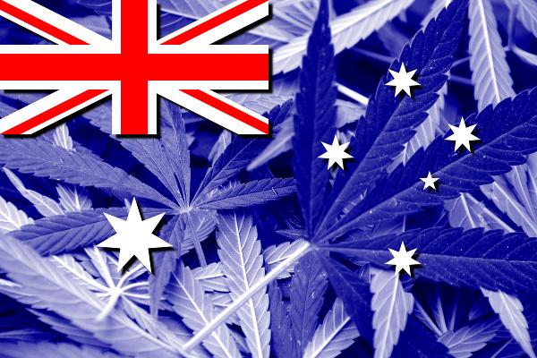 vlajky-marihuana-8