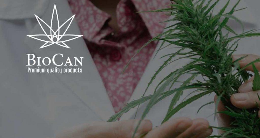 legalna-marihuana-svajciarsko-fedora-2