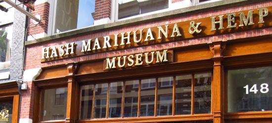 marihuana-amsterdam-konope-1