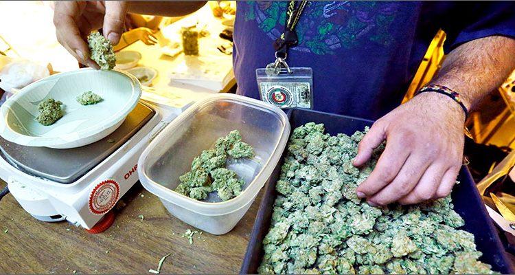 marihuana-colorado-predaj-1